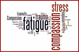 Oct 21 Empathy, Compassion and Collection Fatigue